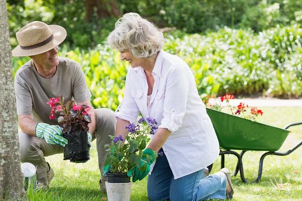 Man and woman potting plants